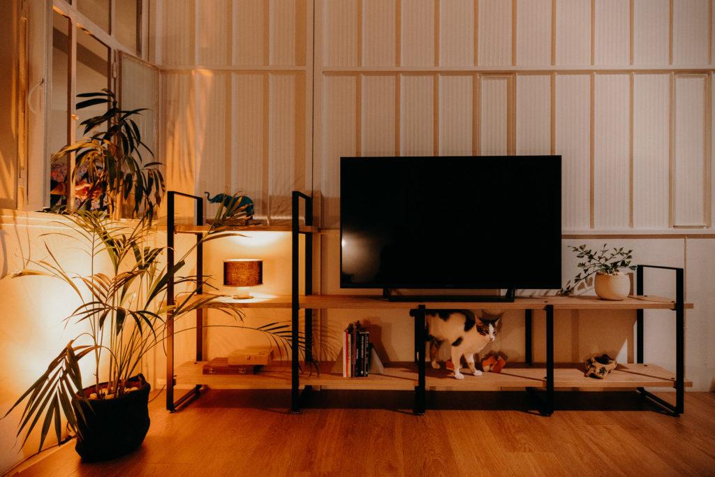 Tv Furniture.2